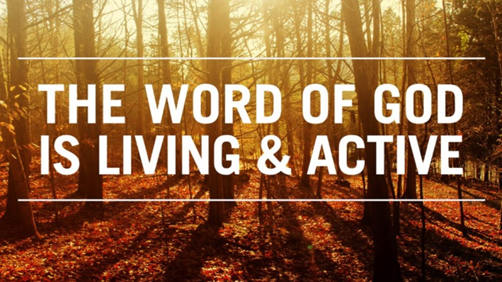 God's word is alive!